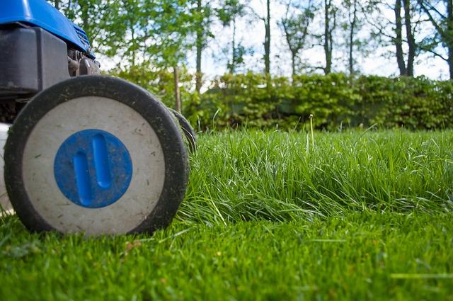 košnja trave